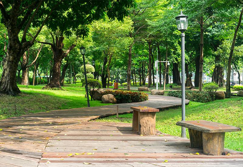 Das Bild zeigt einen Weg, der sich durch einen Park in einer Stadt schlängelt. Der Weg besteht aus Holzbohlen und verläuft in Kurven an Büschen, Wiesen und Laternen vorbei. Es ist Tag, die Sonne leuchtetweiter hinten zwischen den Bäumen auf ein Stück Rasen.